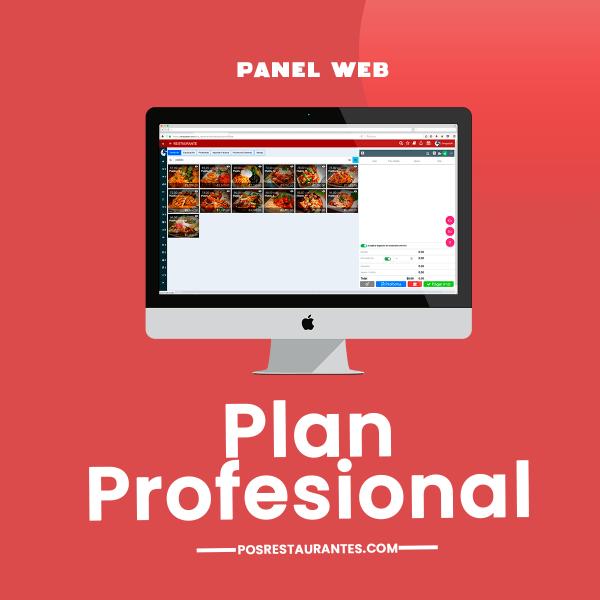 Plan-Profesional